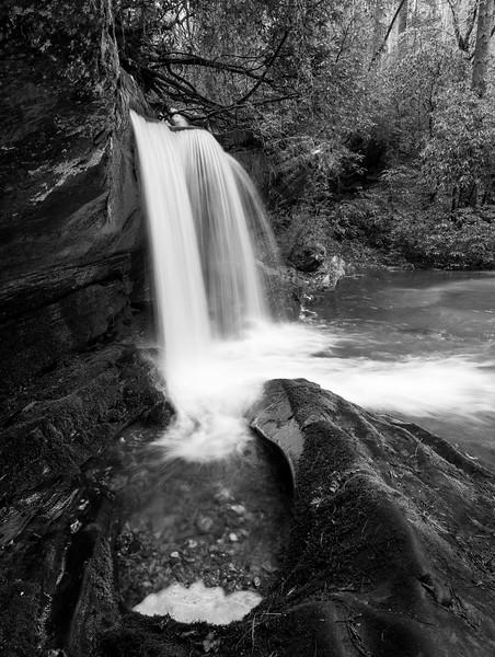 The Plunge Pool of Raper Creek
