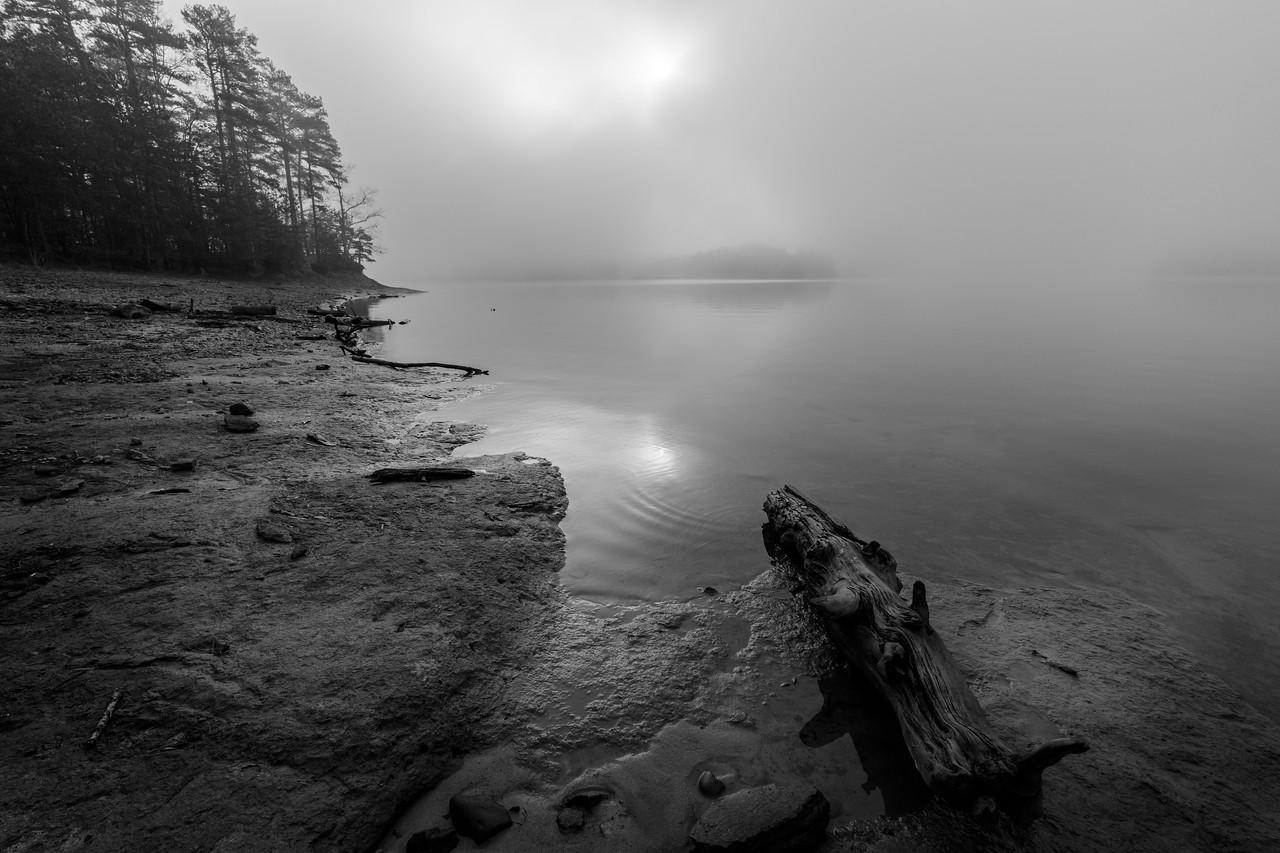 IMAGE: https://photos.smugmug.com/Nature-in-Black-and-White/i-bQJ5pVC/0/6e93195d/X2/IMG_22703-171201-X2.jpg