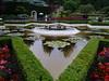 NV10 MP Samsung<br /> Star shaped pond