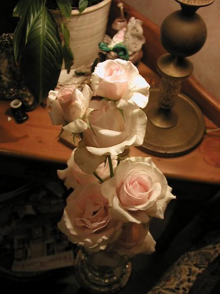 RosesRSAonly _012