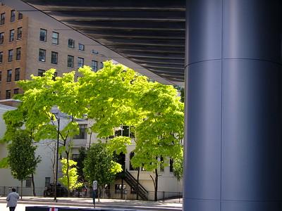 Nature verus Urban
