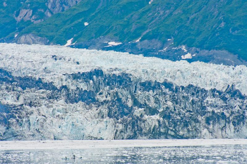 Nature from Alaska Photograph 34