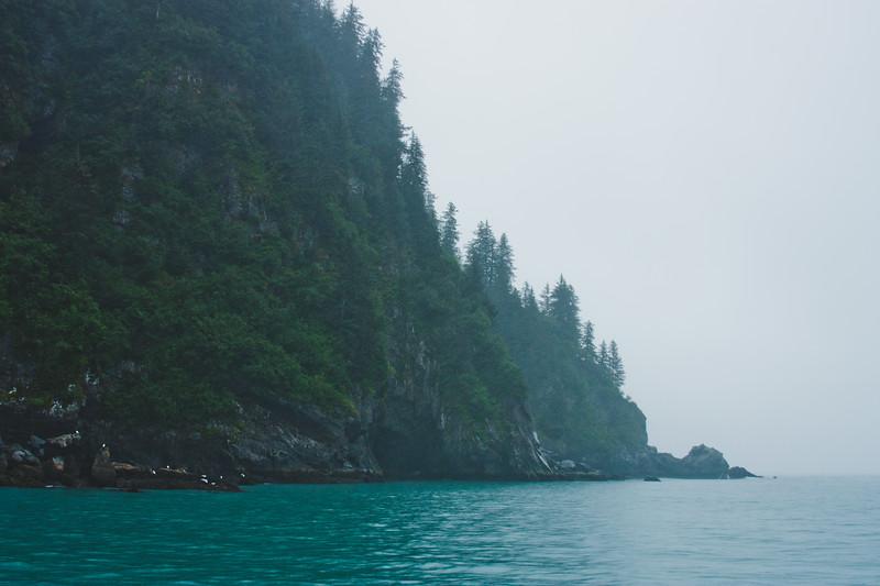 Nature from Alaska Photograph 24