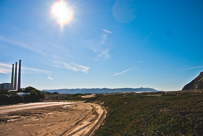 Nature in Northern California Photograph 14