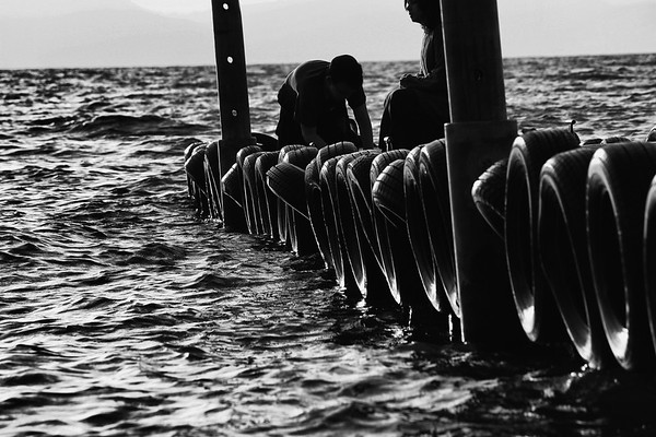 Rubber tire bumpers on side of dock in the Kinneret - BW