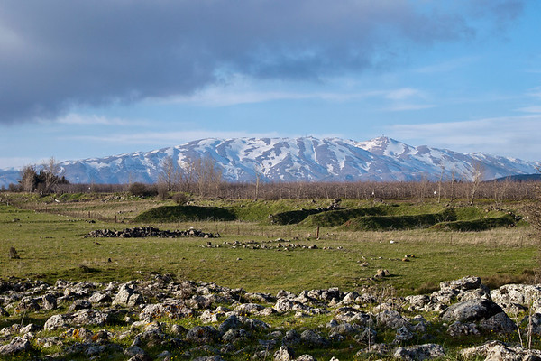 Mount Hermon behind green field