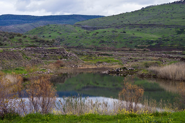 Winter lake in the Golan Mountains