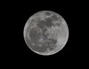 Moon - Florida - Closest to Earth in 18 Years - 2