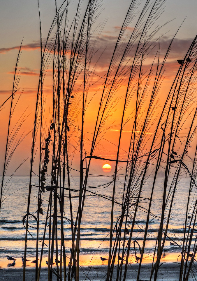 sunset7590_1_2_tonemapped