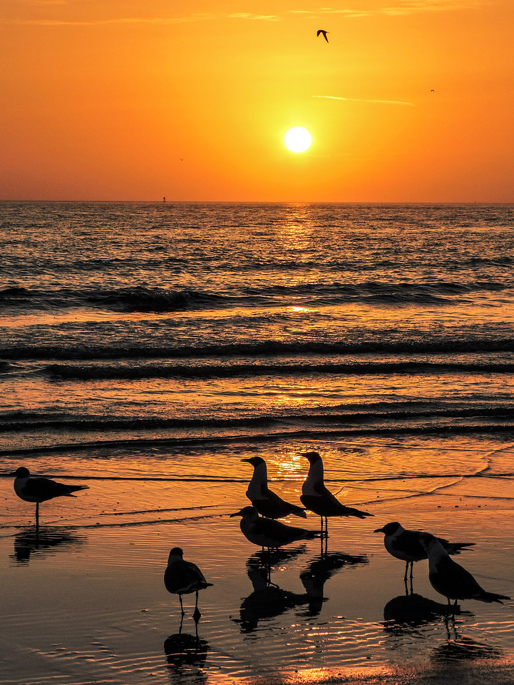 sunset7584