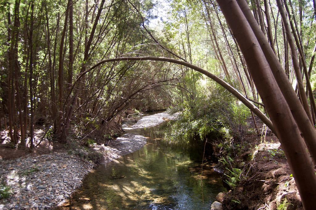 Trilho das Levadas - Valongo do Vouga - Agueda