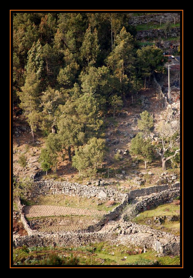 de Regoufe a Drave 2008-04-05DSC_5916