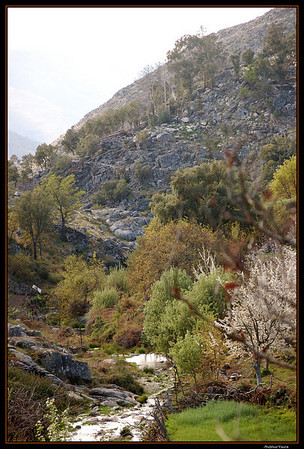 de Regoufe a Drave 2008-04-05DSC_5884