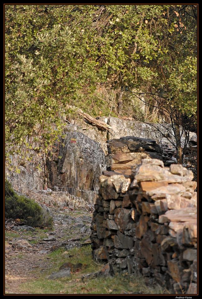 de Regoufe a Drave - 05-04-2008 - 5983