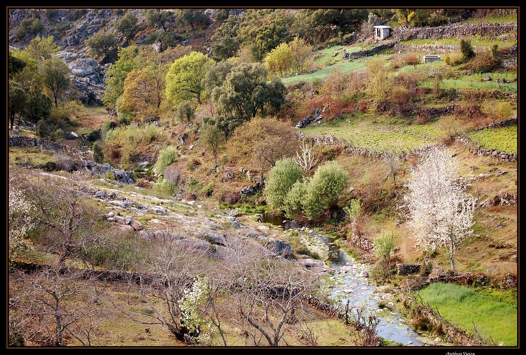 de Regoufe a Drave 2008-04-05DSC_5886