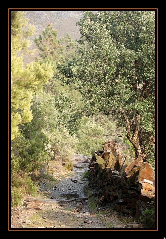 de Regoufe a Drave 2008-04-05DSC_5975