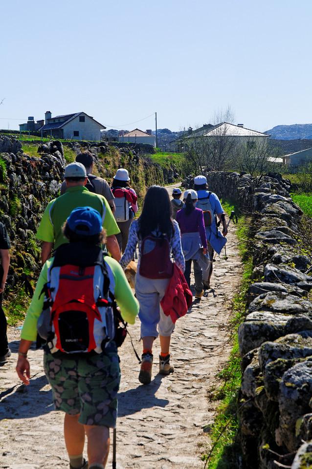 Trilho da Viagem à Pré-História (Merujal)