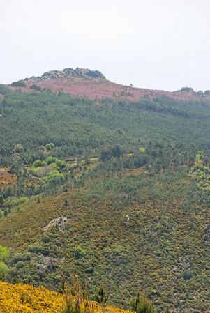 Caminho de xisto das aldeias de Gois -20090509  -  0152