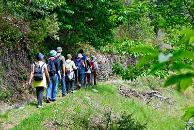 Caminho de xisto das aldeias de Gois -20090509  -  0173