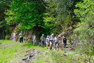 Caminho de xisto das aldeias de Gois -20090509  -  0176