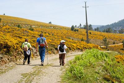 Caminho de xisto das aldeias de Gois -20090509  -  0145