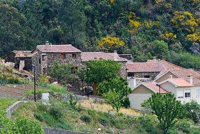 Caminho de xisto das aldeias de Gois -20090509  -  0171