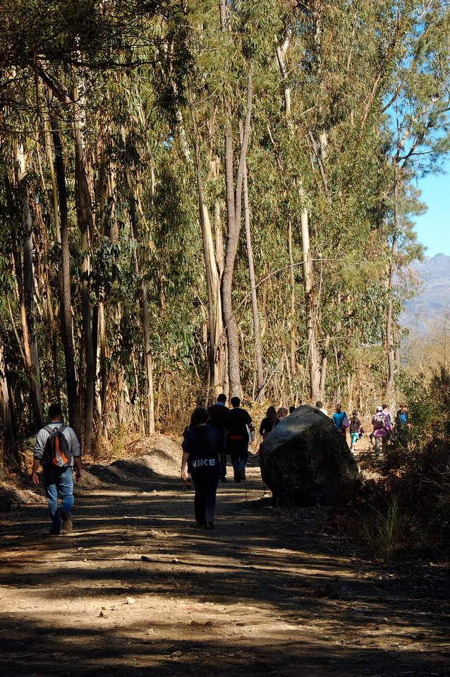 Os recursos naturais da linha do Vale do Vouga