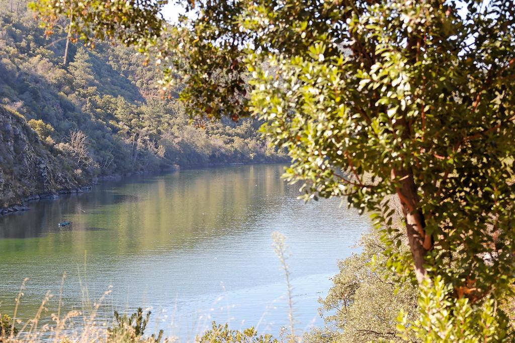 """Zona dos """"Moinhos das Freiras"""". Segundo informação obtida junto de populares, neste local existiam 2 moinhos um perto da margem e outro no meio do leito do rio Zêzere que ficaram submersos aquando da construção da barragem."""