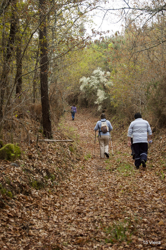 Caminhada das Termas - S. Pedro do Sul