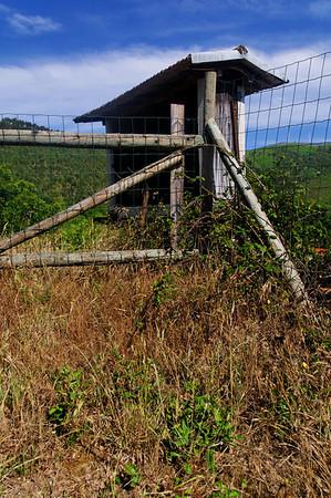 """Percurso """"Um Olhar Sobre a Natureza"""" - Sul - São Pedro do Sul"""