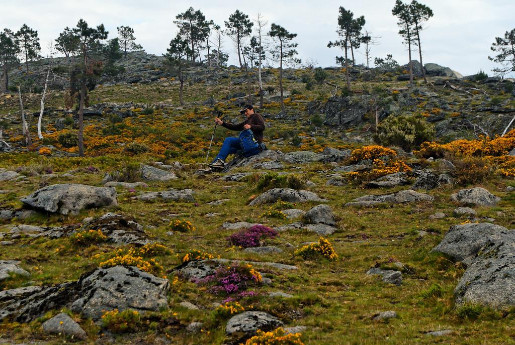 Rota das betulas - S  Pedro so Sul  -20090524  -  1104