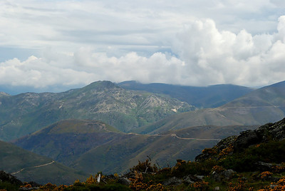 Rota das betulas - S  Pedro so Sul  -20090524  -  1113