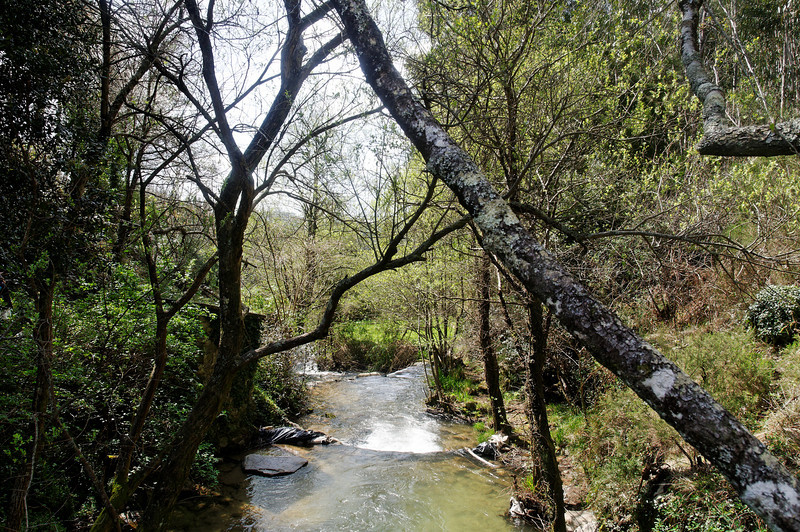 PR2 - Sever Vouga - Cabreia e Minas do Braçal - 20100328 - 6504_raw