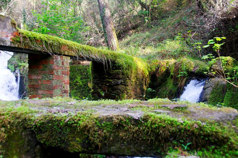 PR2 - Sever Vouga - Cabreia e Minas do Braçal - 20100328 - 6572_raw