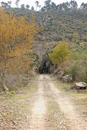 1.5.Antiga linha de caminho de ferro Março 2008