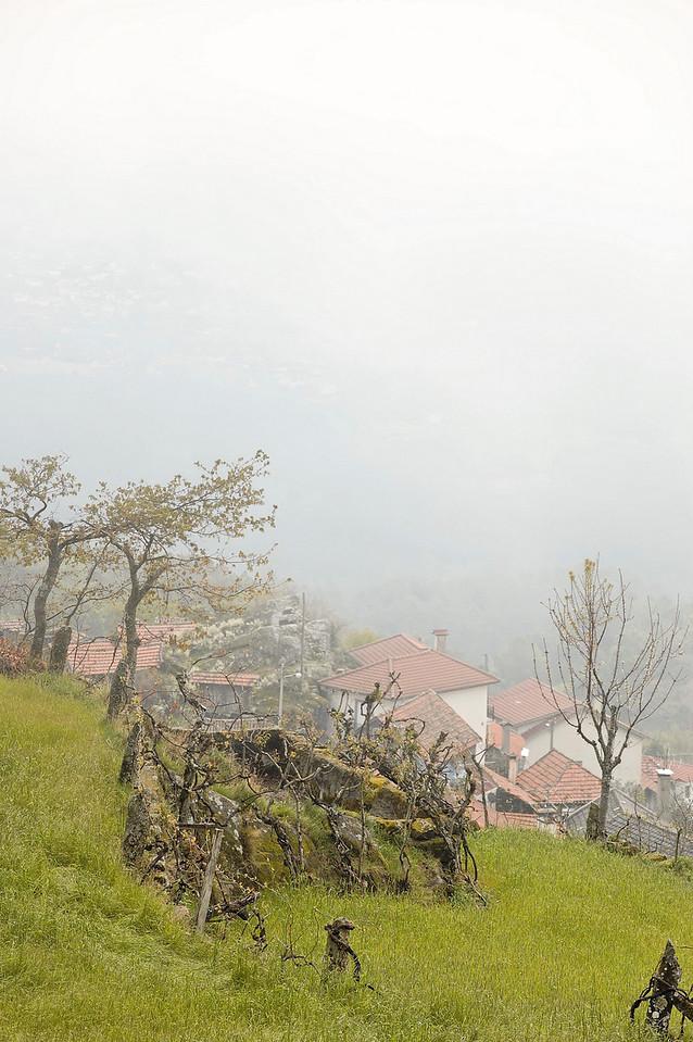 pela Serra do Caramulo<br /> Fornelo do Monte