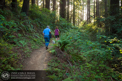 Hiking the Redwood Peak Trail (Redwood Regional Park)