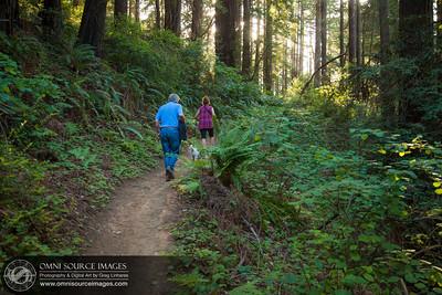 Hiking the Redwood Peak Trail (Redwood Regional Park)
