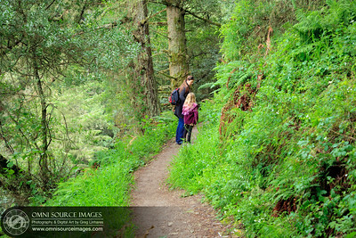 Hiking Matt Davis Trail - Mt Tamalpias