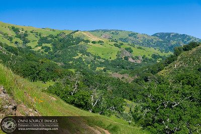 Canyon View Hiking Trail - Sunol Ohlone Wilderness