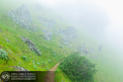 Hiking Mt Tamalpias Coastal Trail in the Fog