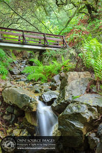 Footbridge and Waterfall - Matt Davis Trail Mt Tamalpias