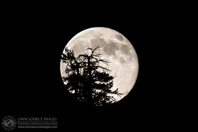 Full Moon Over Lake Alpine, CA. Saturday, July 12, 2014 at 9:20 PM. 1/160 second exposure at f/11, ISO 800, 400mm.