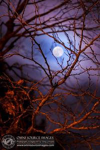 Full Phase Lunar Halo – Tuesday, November 27, 2012 at 7:36 PM. 1/15 sec at f/2.8, ISO 50, 140mm.
