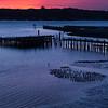 Bodega Bay Sunset (Portrait)