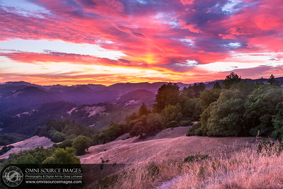Dramatic Sunset Near Bullfrog Pond Campground - Armstrong Redwoods State Natural Reserve, Guerneville, CA