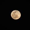 1921052021-02-27 Full Moon held at Home,  Arizona on 2/27/2021.