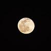 1922382021-02-27 Full Moon held at Home,  Arizona on 2/27/2021.