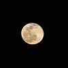 1923442021-02-27 Full Moon held at Home,  Arizona on 2/27/2021.