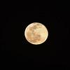 1919532021-02-27 Full Moon held at Home,  Arizona on 2/27/2021.